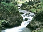 岩泉三十景のイメージ